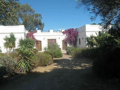 El Cortijo del Cruce - Farmhouse in Vejer de la Frontera, Cadiz Province